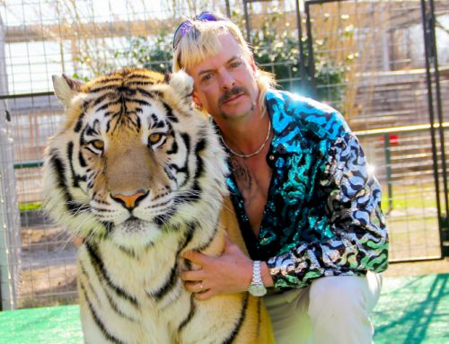 'Tiger King' Halloween Costumes That Will Impress All the Cool Cats & Kittens in Your Life