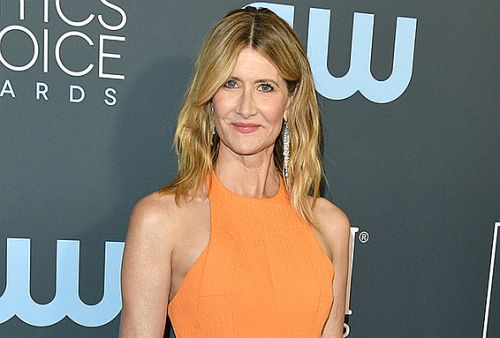 Laura Dern Coupled Her Critics' Choice Chanel Makeup Look With This Small-Batch Botanical Skin Care Brand