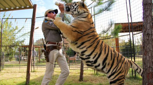 Tiger King's Joe Exotic Is Still in Jail-But He Has a Plan to Get Out Early