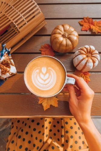 "25 Autumn Instagram Captions Your Followers Will ""Fall"" In Love With"