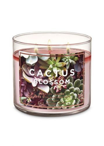 10 Bath & Body Works Candles That Smell Like a Vacation You Don't Want to End